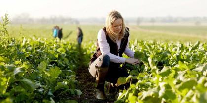 Du học ngành Nông nghiệp tại Canada