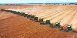 Du học Úc – Ngành Nông nghiệp (Agriculture) – Lĩnh vực khát nhân lực tại Úc