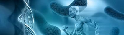 Giấc mơ du học ÚC – Ngành  Khoa học Y Sinh (Biomedical Science)