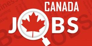 Top 20 ngành hot thu nhập tốt nhất và nhu cầu tuyển dụng cao nhất Canada