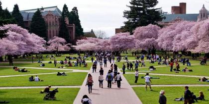 Du học Mỹ – Cơ hội học bổng lên đến 10000 USD tại Arizona University