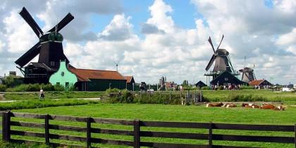Cơ Hội Việc Làm Sau Khi Tốt Nghiệp Tại Hà Lan