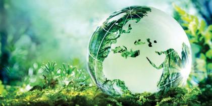 Du Học Hà Lan – Ngành Môi Trường (Environment) có mức lương hấp dẫn sau tốt nghiệp