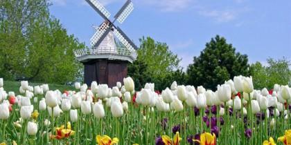 Du học Hà Lan – Khóa dự bị tại tập đoàn Giáo Dục Study Group