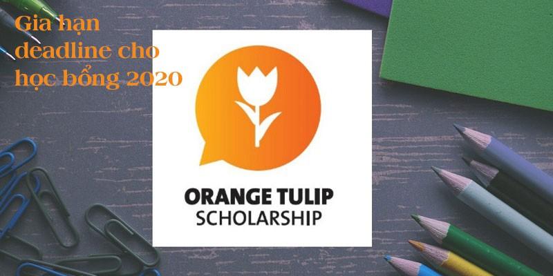 Gia hạn deadline nộp hồ sơ học bổng OTS Hà Lan 2020 - Orange Tulip Scholarship