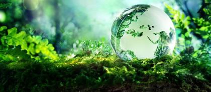 Du học Anh – Ngành Môi trường/Environment – Chìa khóa lý tưởng cho tương lai