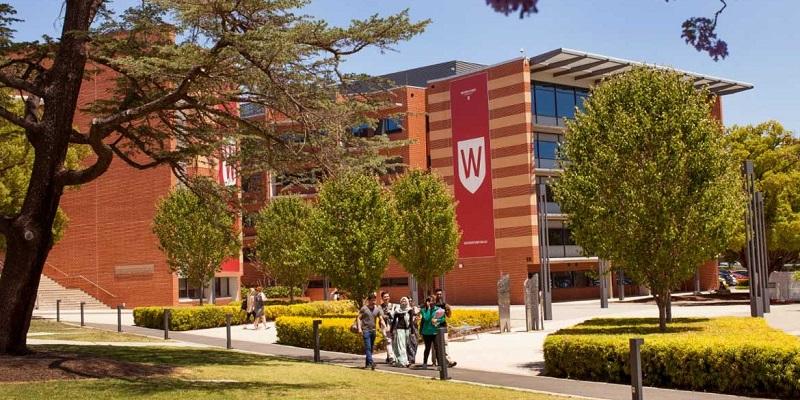 Danh sach cac truong Sydney - Truong Dai hoc Western Sydney University